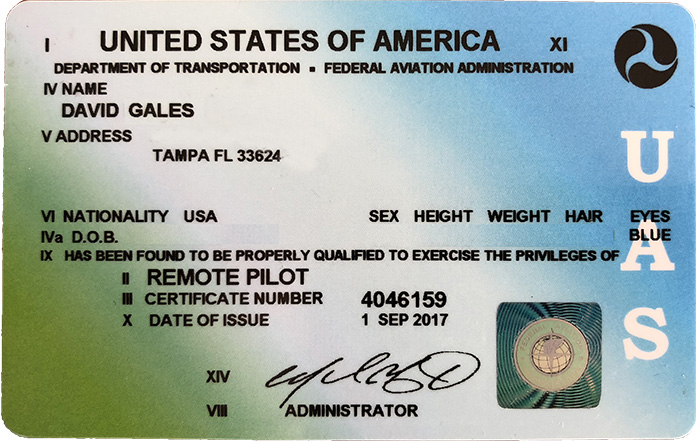 Remote Airman License